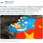 FIG2 NED tweet Xinjiang